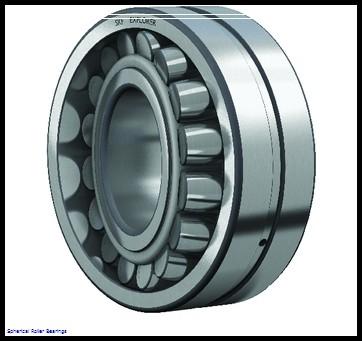 NSK 22207ce4 Spherical Roller Bearings